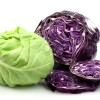 Cabbage Tips