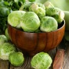 Brussels Sprout Nutrition
