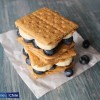 Blueberry S'mores