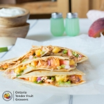 Peach, Nectarine, BBQ Chicken Quesadilla