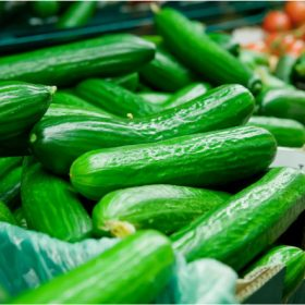 How To Select and Store Cucumbers