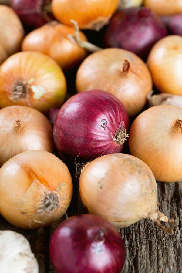 onion-varieties