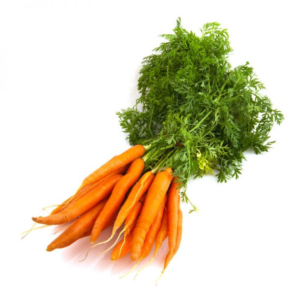 How-to pick and store carrots