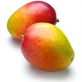 Mango Tips
