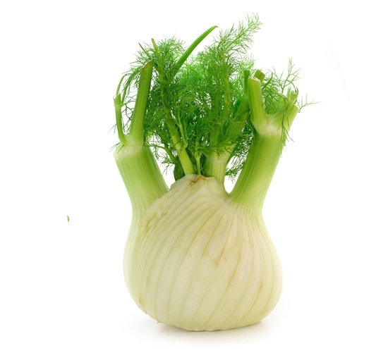 how to cook fresh fennel