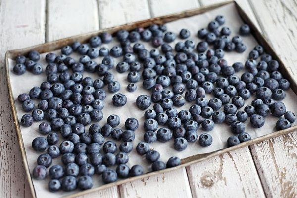 freezing blueberries