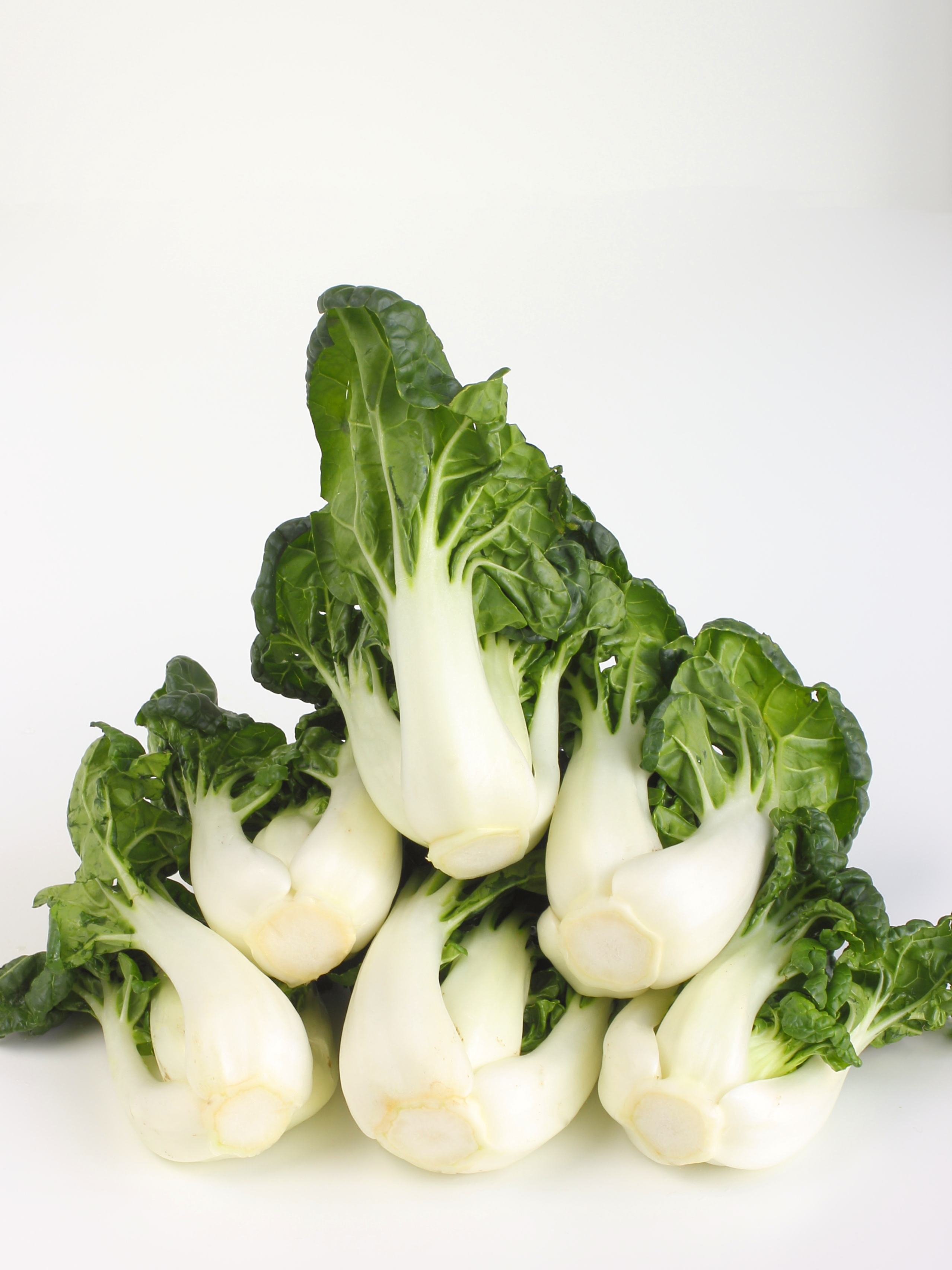 how to choose bok choy