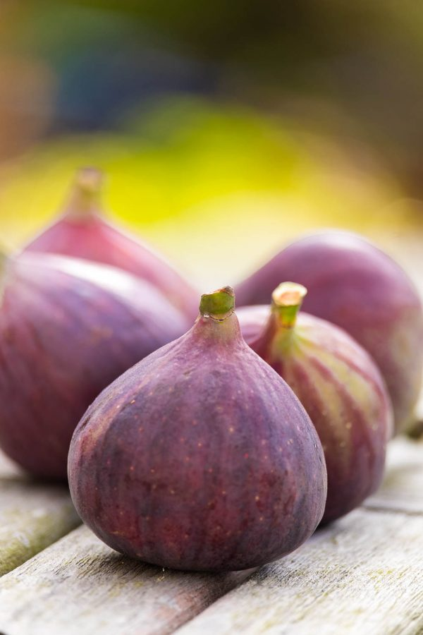 Fig Nutrition