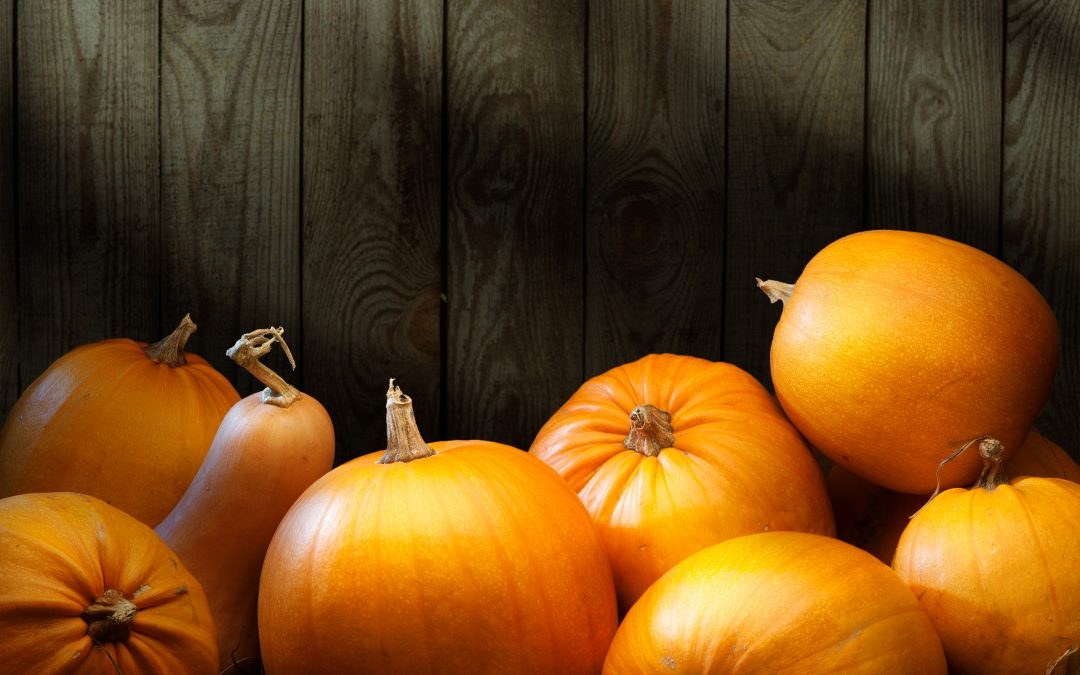 How to Select and Store Pumpkins