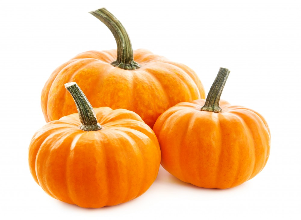 Can You Eat Decorative Pumpkins Pumpkins Produce Made