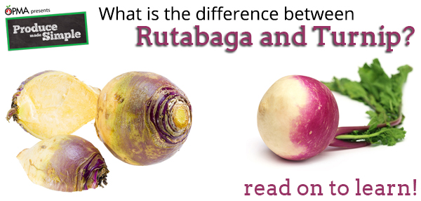 Difference-between-turnip-and-rutabaga