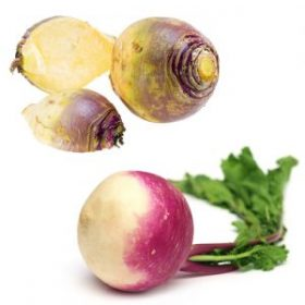 What's the difference between Turnip and Rutabaga?