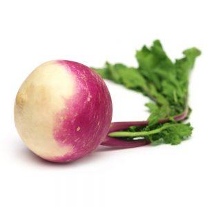 turnip-web