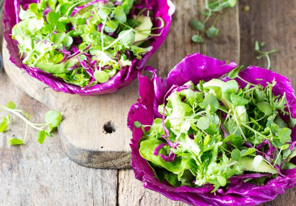 Open Cabbage Lettuce Wraps
