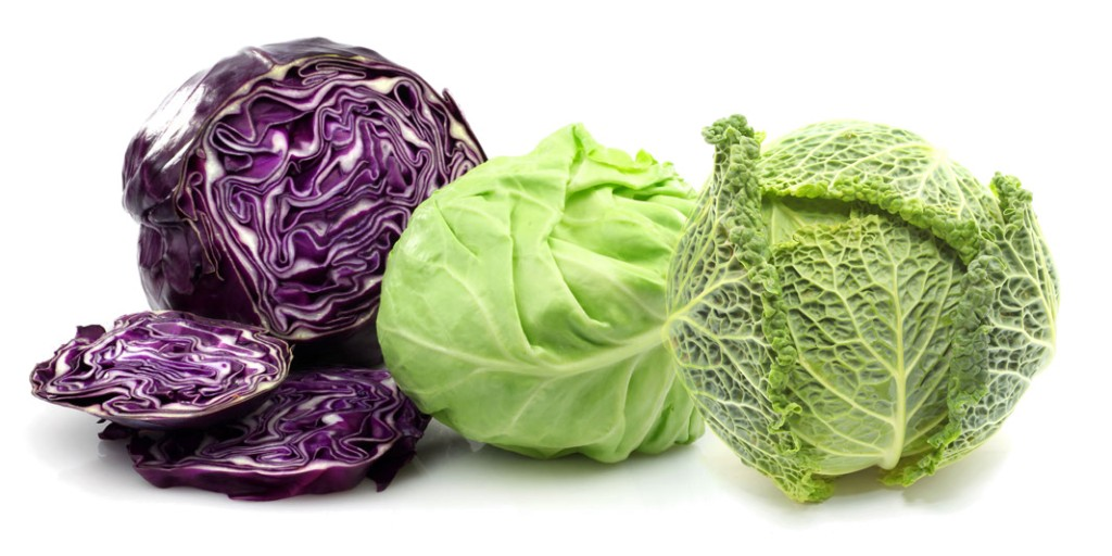 cabbage-trio