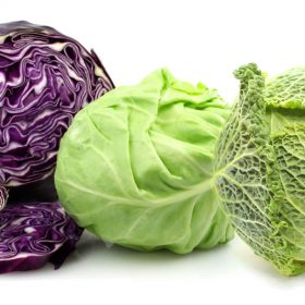 Cabbage Varieties