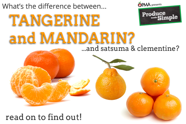 The Difference between Oranges, Mandarins, Tangerines, Satsumas and Clementines