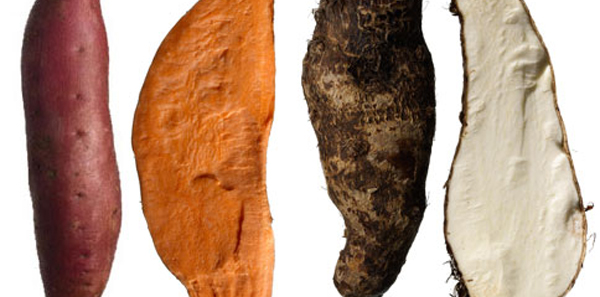 Sweet Potato Varieties