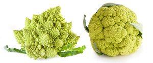 Broccoflower Varieties
