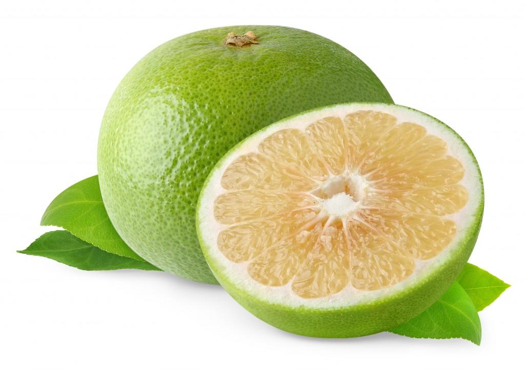 grapefruit-white-ss