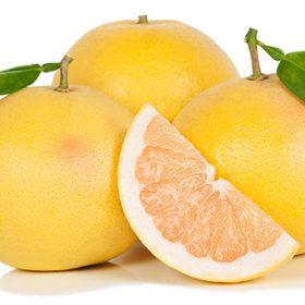 Grapefruit Tips