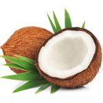 mature-coconut-600