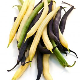 green bean-varieties