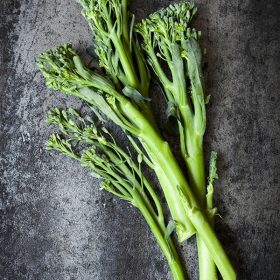 How to Select and Store Broccolini™