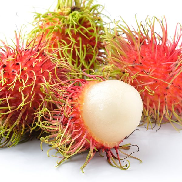 rambutan-square-close