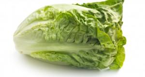 Lettuce Nutrition