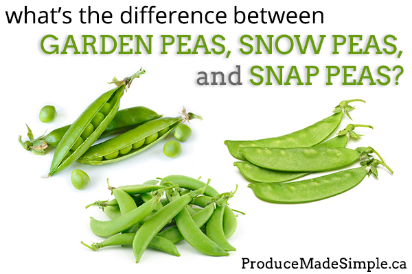 The Difference Between Garden Peas, Snow Peas, and Sugar Snap Peas