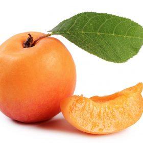 Apricot Varieties
