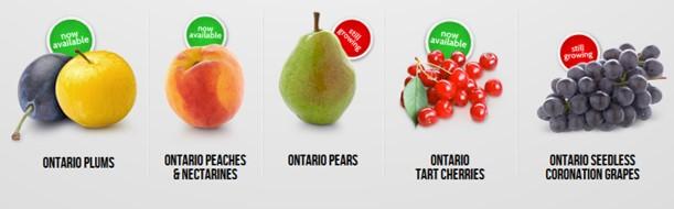range of tender fruit