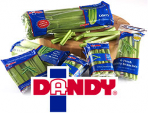 dandy-fresh-foods