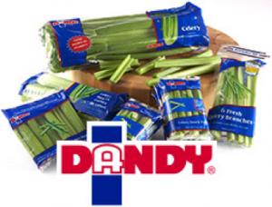 dandy-fresh-foods