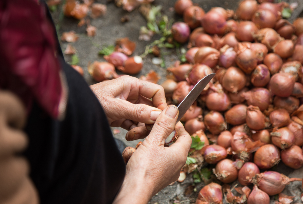 How To Select and Store Onions