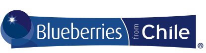 BLUEBERRIES FROM CHILE LOGO