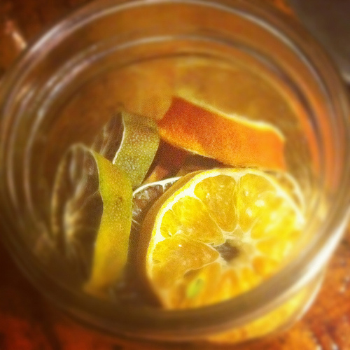 dehydrated holiday citrus