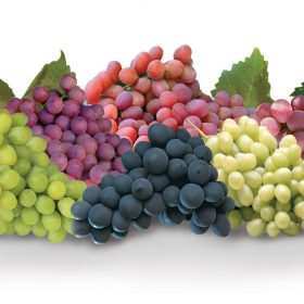 Grapes | Produce Made Simple