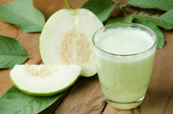 Guava Tips