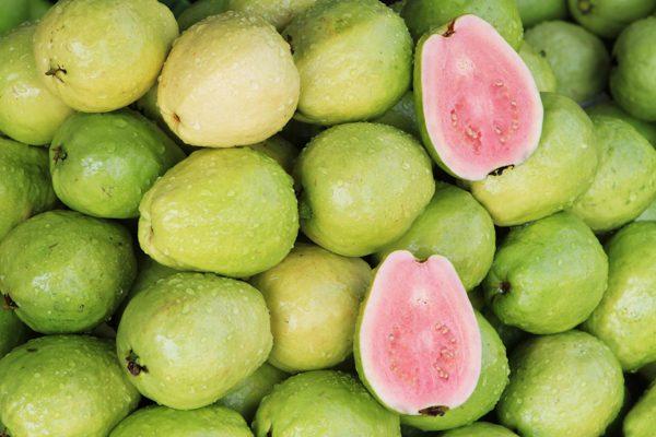 Guava Varieties