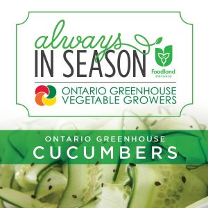 Always In Season Ontario Greenhouse Cucumbers