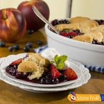 Fresh Chilean Blueberry Nectarine Cobbler