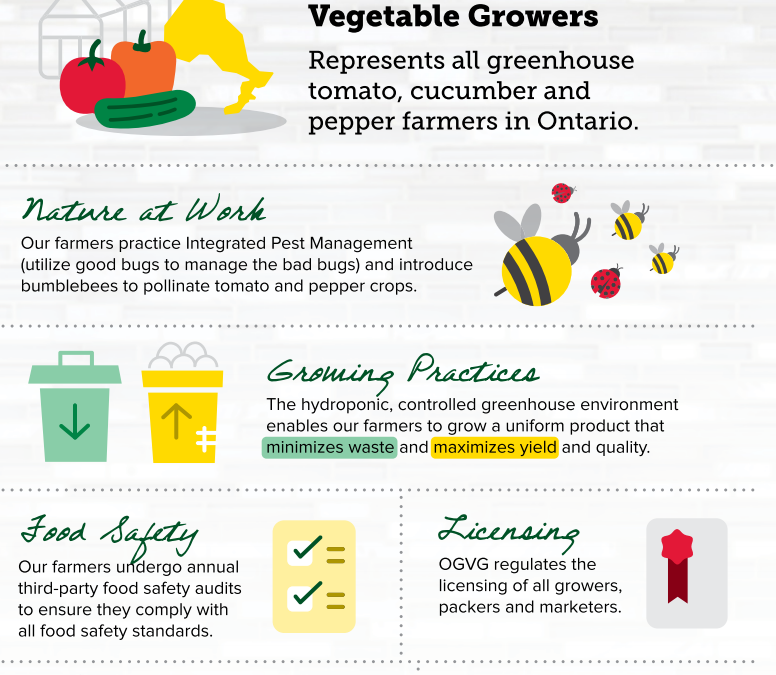 All About Local Greenhouse-Grown Produce!