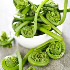 how to prepare fiddleheads