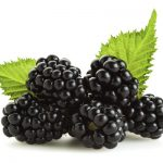 Everything You Needed to Know About Blackberries