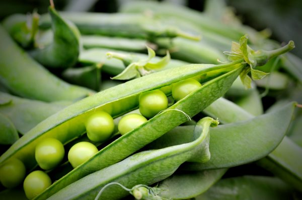 How to Select and Store Green Peas