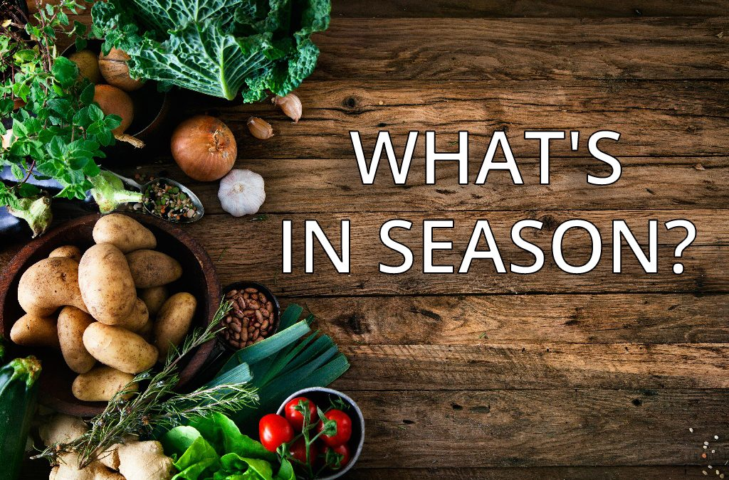 What's In Season Right Now? Fall Harvest Edition!