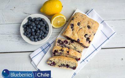 Vegan Blueberry Lemon Loaf