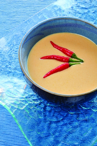 Heated Chilled Bell Pepper Soup